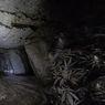 Mengintip Perkebunan Ganja di Dasar Bumi yang Mencapai Rp 19 Miliar!