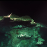 Di Dasar Laut yang Gelap Ada Rumah Ekosistem Baru, di Mana Letaknya?