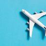 Akankah 'Flygskam' Mengubah Kebiasaan Penerbangan Internasional?