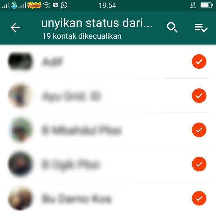Langkah Cepat Sembunyikan Status Whatsapp Pribadi Dari Kontak Teman