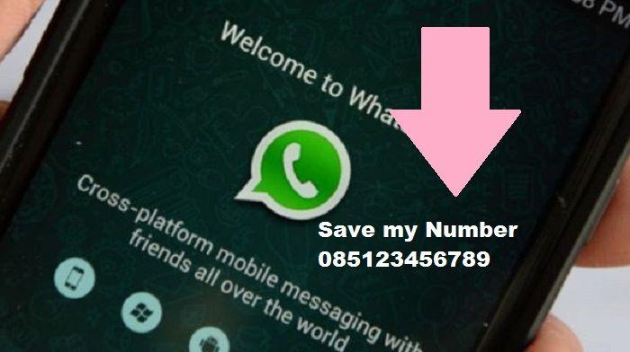 Trik Jitu Mengatasi Nomor Whatsapp Tak Muncul Di Kontak Hape Semua Halaman Nextren Grid Id