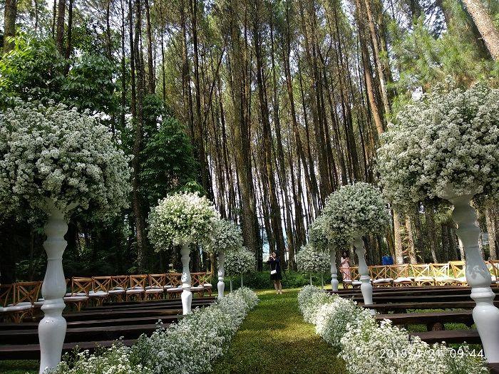 Segini Harga Pesta Pernikahan Di Pine Hill Cibodas Tempat Syahnaz Sadiqah Dan Jeje Govinda Menikah Semua Halaman Grid
