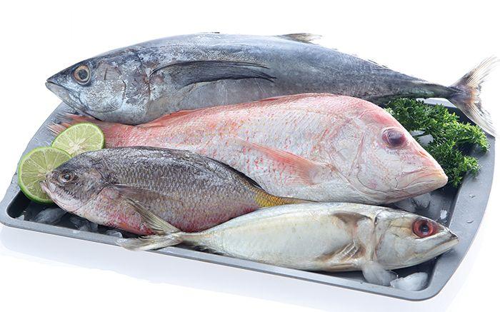 Sering Ada Di Meja Makan Deretan Jenis Ikan Ini Ternyata Sebaiknya Tak Dimakan Manusia Efeknya Mengerikan Semua Halaman Sajian Sedap