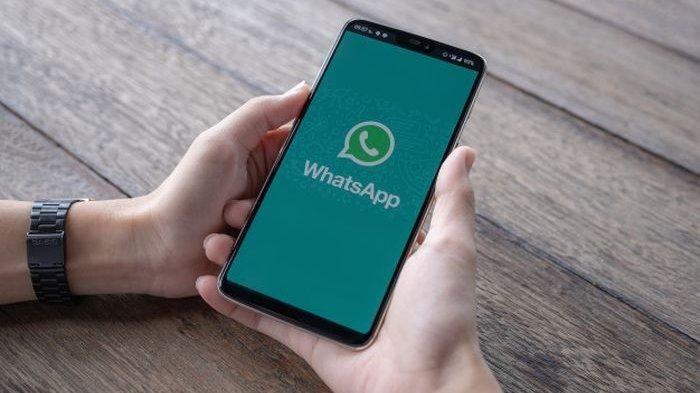 Fitur Whatsapp Delete For Everyone Tidak Hapus File Foto Di Iphone Info Komputer