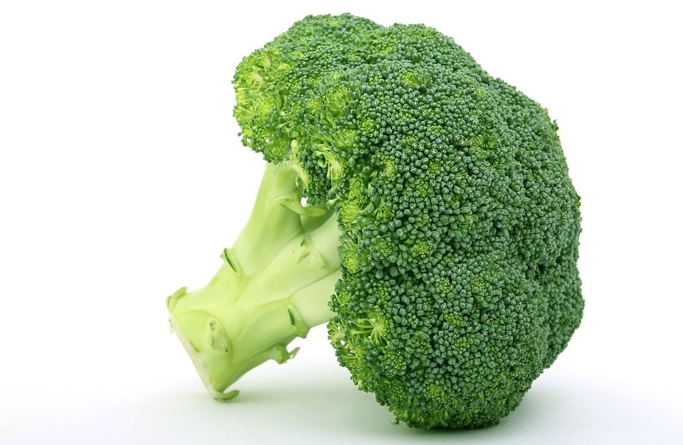 Resep Mpasi Bergizi Bayi 10 Bulan Brokoli Goreng Kriuk Bagus Untuk Menjaga Kesehatan Rambut Maupun Usus Si Kecil Semua Halaman Nakita