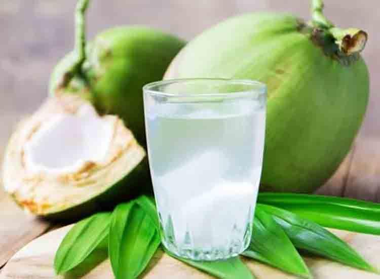 Hati Hati Dikira Sehat Ternyata Minum Air Kelapa Bisa Picu Hal Mengerikan Ini Pada Tubuh Simak Penjelasannya Semua Halaman Sajian Sedap