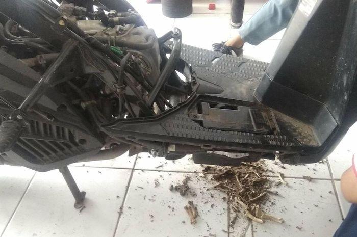 Bodi Honda Vario 150 jadi sarang tikus