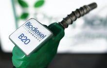 Setelah Solar B20, Pemerintah Siap Terapkan B30 pada 2020