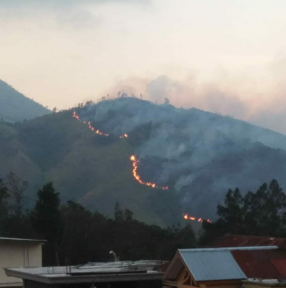 Berita Bukit Mongkrang Terbaru Hari Ini Gunung Lawu