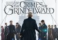 Grindelwald Dulunya Sahabat Dumbledore, Ini Dia Fakta Menarik Lainnya!