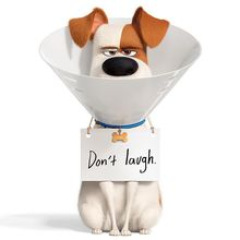 Film The Secret Life of Pets Dibuat Sekuelnya, Ada Trailer Khusus Max!