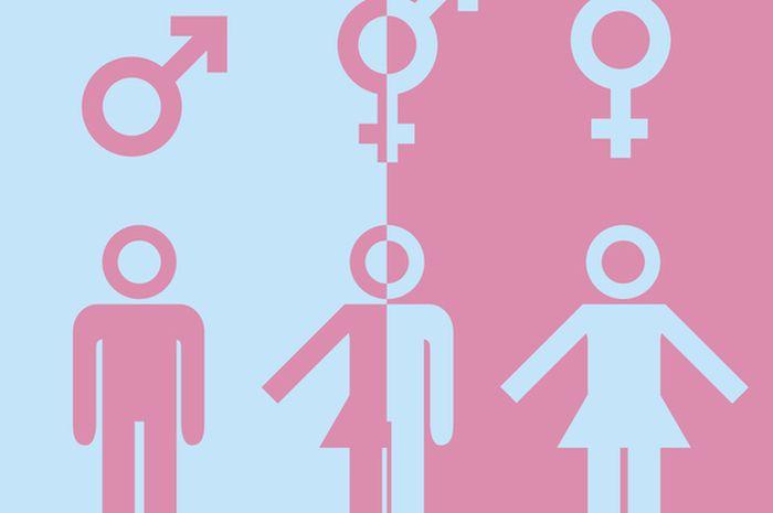 Genderqueer atau non-biner berbeda dengan transgender atau interseks.