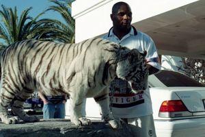 Tak Mau Jemawa, Mike Tyson Akui Tidak Bisa Kalahkan Muhammad Ali