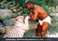 Teddy Atlas Sebut Mike Tyson Bermental Lemah Meski Tubuhnya Kuat