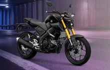 Yamaha MT-15 Meluncur, Aksesori Resminya Apa Saja? Intip Tetangga