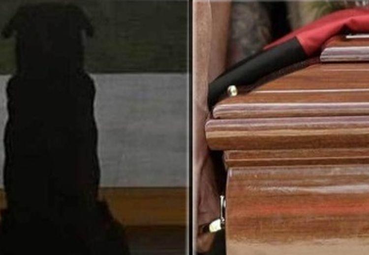 Anjing Emiliano Sala Setia Menemani Sang Pemilik hingga Seremoni Pemakaman Selesai