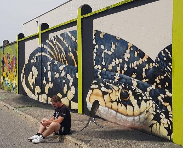 Keren Dan Unik Cosimo Cheone Ubah Tembok Jalanan Jadi Hidup Lewat Street Art Semua Halaman Kids