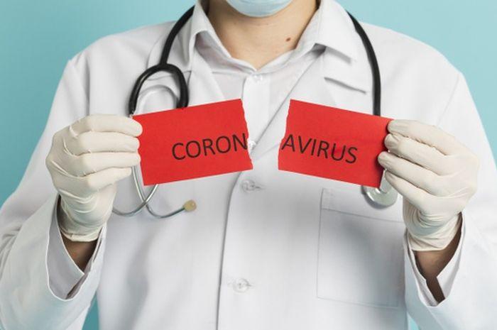 (ilustrasi) Virus corona