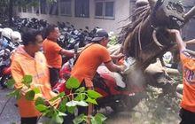 Cara Klaim Ganti Rugi Jika Motor Tertimpa Pohon, Langsung Lapor