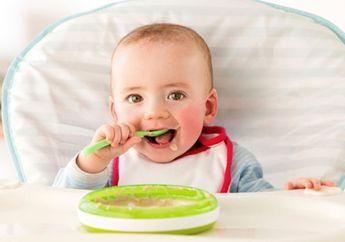 Resep dan Bahan MPASI 8 Bulan Sehat: Puding Mangga, Si Kecil Pasti Suka!