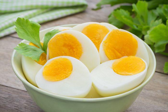 Diet dengan Telur Rebus