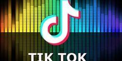 Aplikasi TikTok Sering Digunakan Orang Indonesia Pada Jam 7-8 Malam