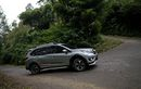 Daftar SUV Bekas Seharga Toyota Veloz Baru, Bisa Dapat Fortuner Sob