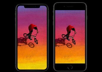 (Rumor) Seri iPhone Tanpa Notch Akan Segera Dirilis Tahun 2020