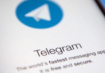 Telegram Buat Fitur Group Video Call, Dipastikan Hadir Tahun Ini